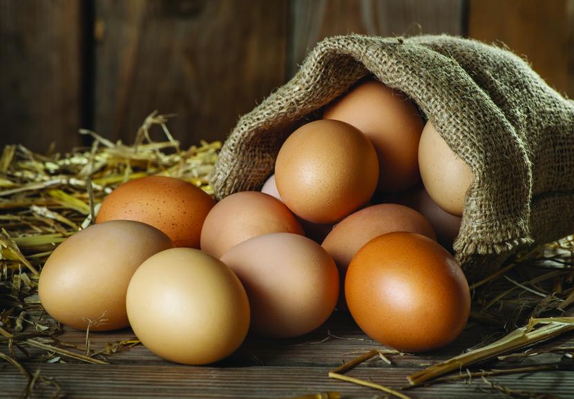 Comment reconnaître l'œuf d'une poule heureuse?